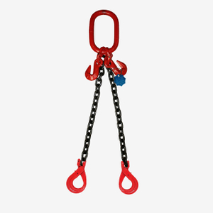 2 Legs Lifting Chain Sling - Clevis Selflock Hook - G80